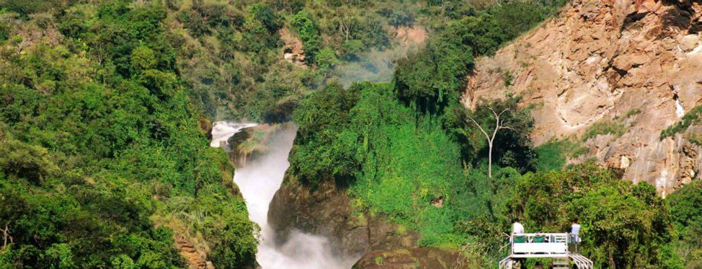 5 Days Uganda Wildlife & Chimpanzee Trekking Safari